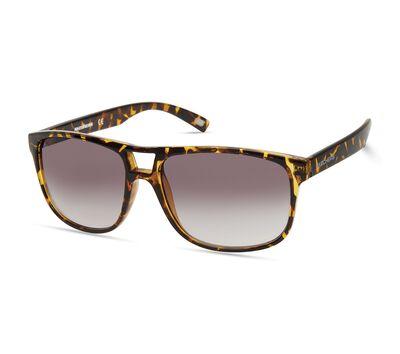 Aviator Plastic Sunglasses